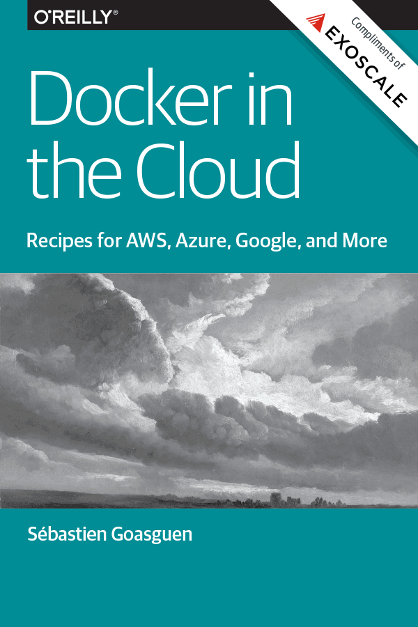 Docker in the cloud cover image