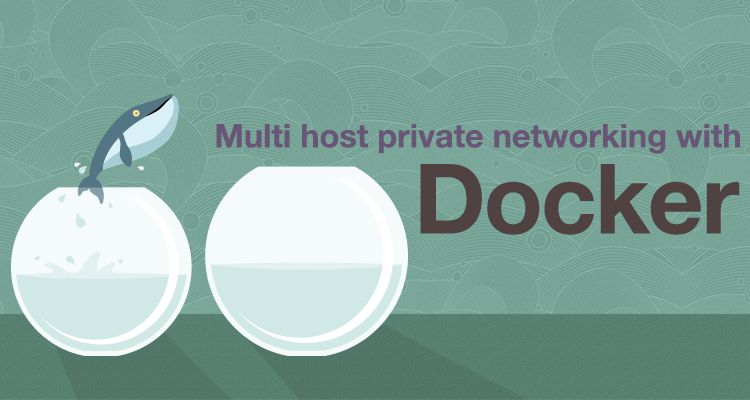Multi host private networking with docker for Consul docker tutorial