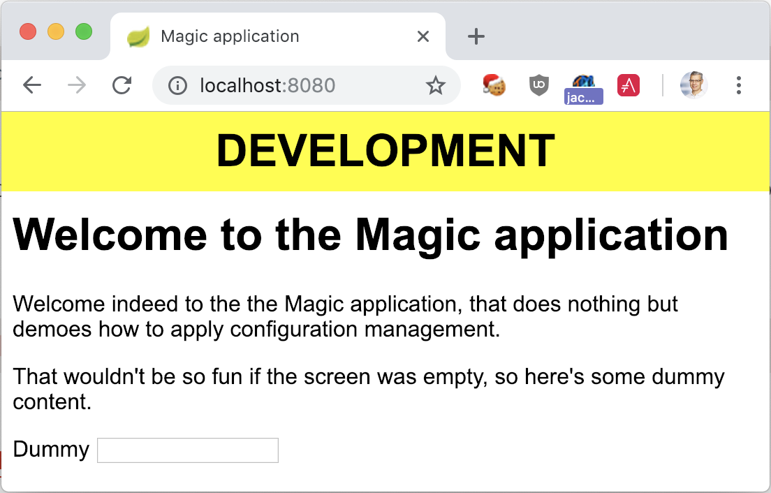 The Magic Application launched with Docker and the dev profile