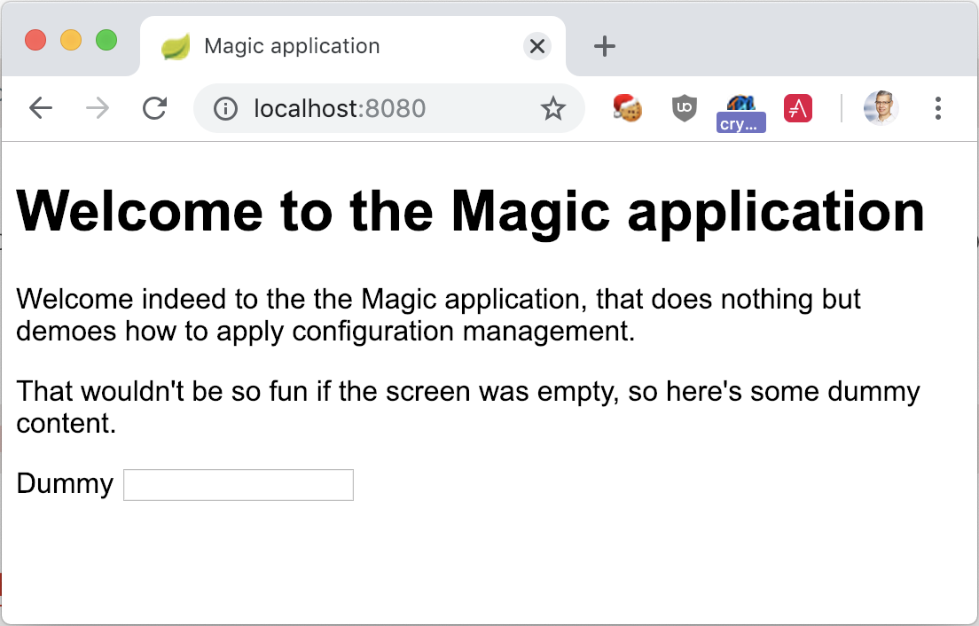 The Magic Application launched with Docker and no profile